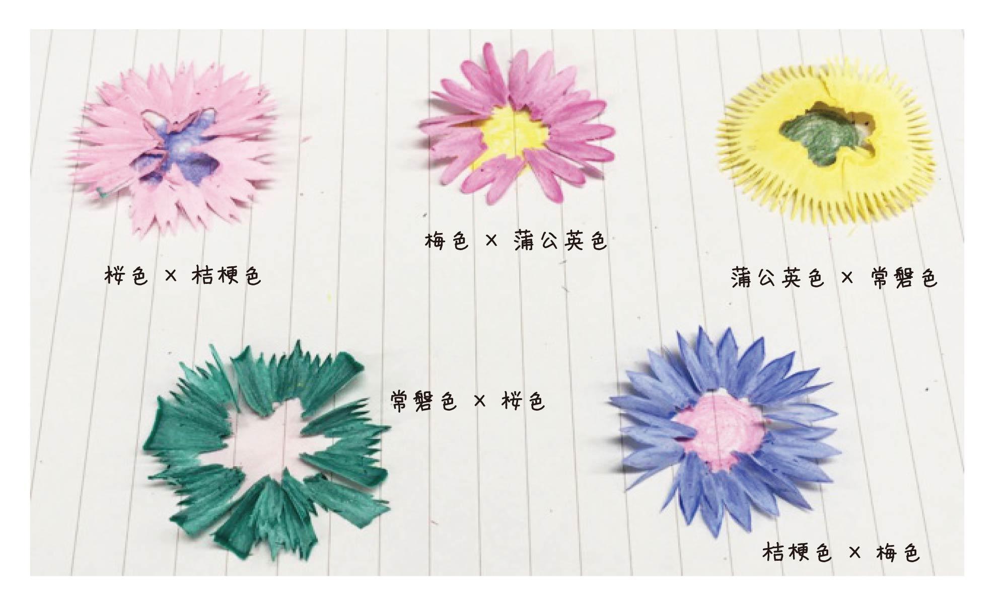 花色鉛筆 花びら